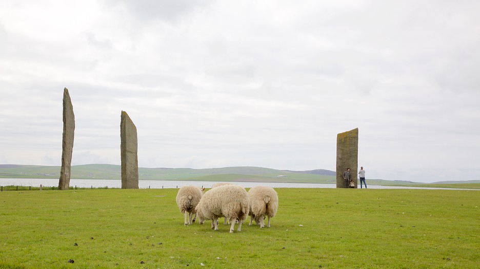 Standing Stones Of Stenness In Stromness Scotland Expedia Ca
