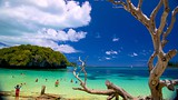 Showing item 75 of 89. Kanumera Beach - New Caledonia - Tourism Media