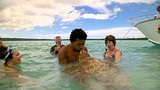 Showing item 84 of 89. Isle of Pines - New Caledonia - Tourism Media