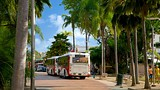 Showing item 65 of 89. Place des Cocotiers - New Caledonia - Tourism Media