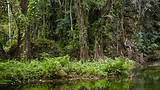 Eden on the River - Vanuatu - Tourism Media