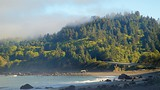 Redwood National and State Parks - Eureka - Tourism Media