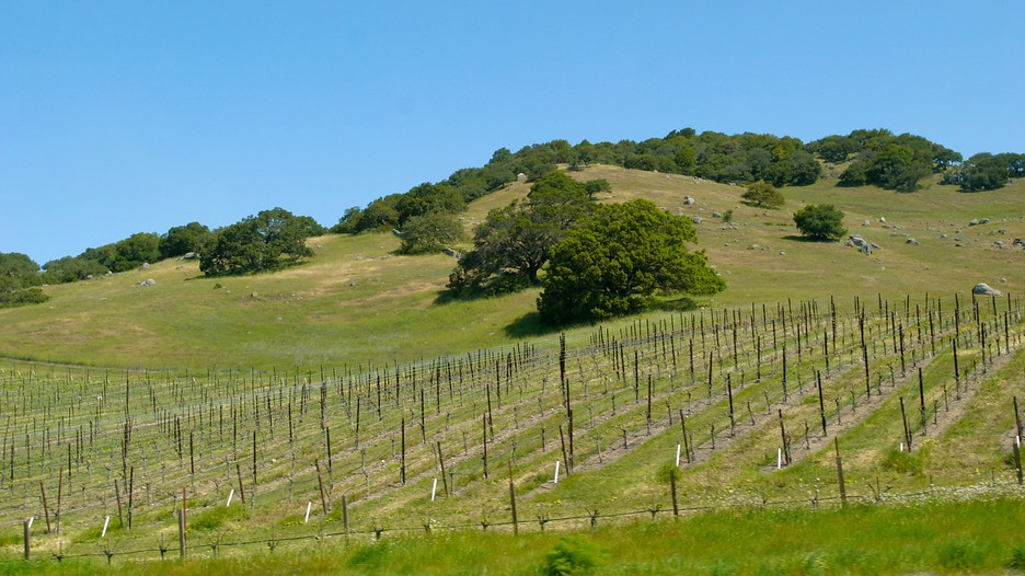 Wine country deals