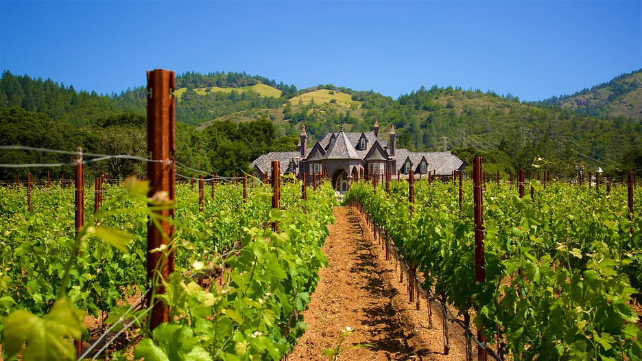 Sonoma valley vacations 2017 package save up to 603 for California wine