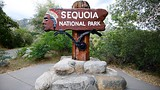 Sequoia National Park - Sequoia and Kings Canyon National Parks - Tourism Media