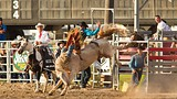 Kalispell - Northwest Montana Fair and Rodeo — Kalispell — Chuck Haney