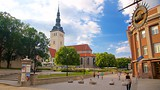 Freedom Square - Estonia - Tourism Media