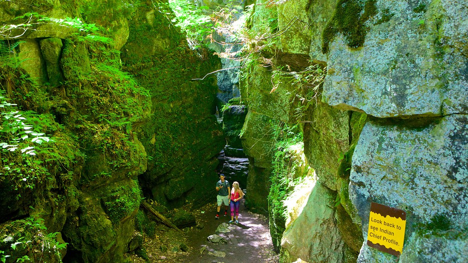 Collingwood Scenic Caves In Collingwood Ontario Expedia Ca