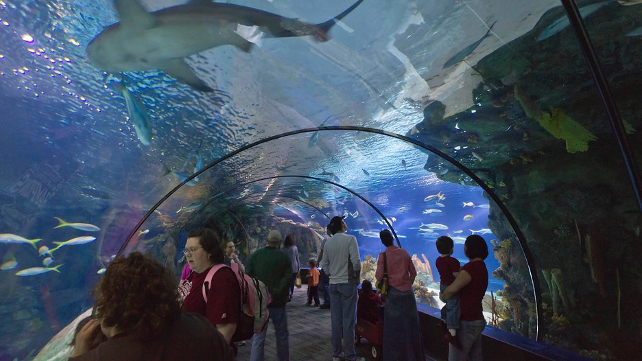 Doorly Zoo Henry Doorly Zoo Desert Dome Stock Image