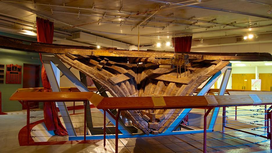 Arabia Steamboat Museum In Kansas City Missouri Expedia
