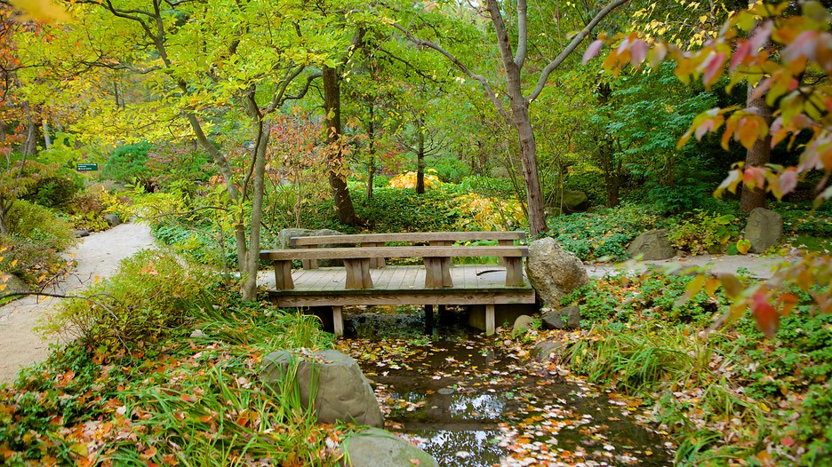 Anderson Japanese Gardens In Rockford Illinois Expedia