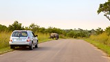 Kruger National Park - Tourism Media