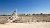 Etosha National Park - Tourism Media