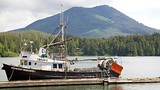 Ucluelet - Tofino (e vicinanze) - Tourism Media