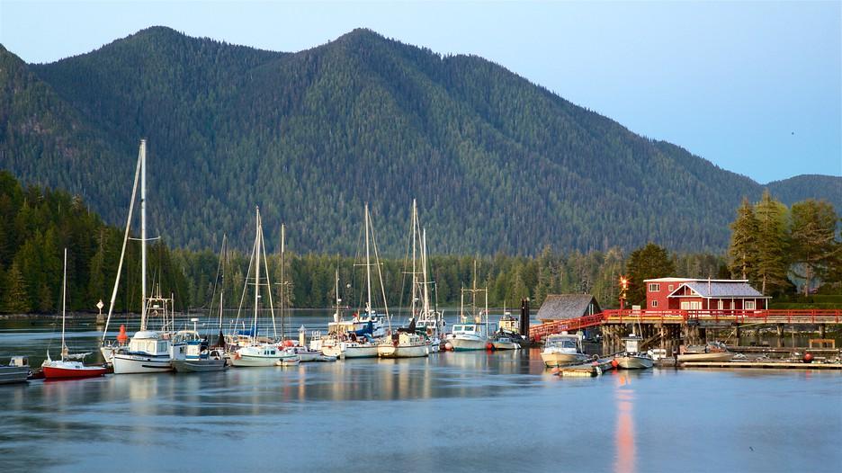 Vancouver To Tofino Tours