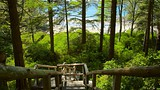 Tonquin Park - Tofino (e vicinanze) - Tourism Media