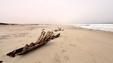 Skeleton Coast National Park - Namibia - Tourism Media