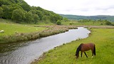 Betws Garmon - Tourism Media