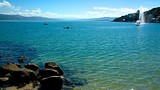 Showing item 10 of 78. Oriental Bay Beach - Wellington - Tourism Media