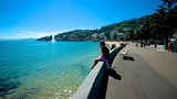 Oriental Bay Beach - New Zealand - Tourism Media