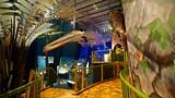 Te Papa (Museum of New Zealand) - New Zealand - Tourism Media