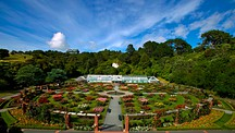 Wellington Botanic Garden - Wellington
