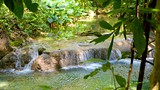Cascate Mayfield - Caraibi - Tourism Media