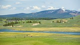 Hayden Valley - Yellowstone National Park - Tourism Media
