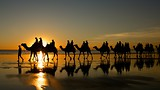Showing item 1 of 61. Cable Beach - Broome - Tourism Media
