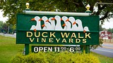 Duck Walk Vineyard - Long Island - Tourism Media