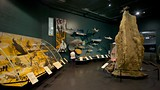 Museum and Art Gallery of the Northern Territory - Darwin - Tourism Media