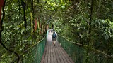 Gunung Mulu National Park - Tourism Media