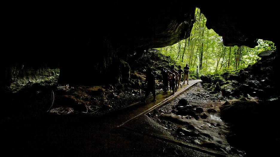 Gunung Mulu National Park Hotels