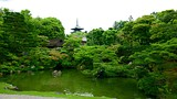 Ninnaji Temple - Kyoto - Tourism Media
