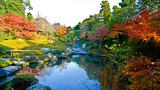 Myoho-in Temple - Kyoto - City of Kyoto and Kyoto Tourism Council
