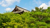 Toji Temple - Kyoto - Tourism Media