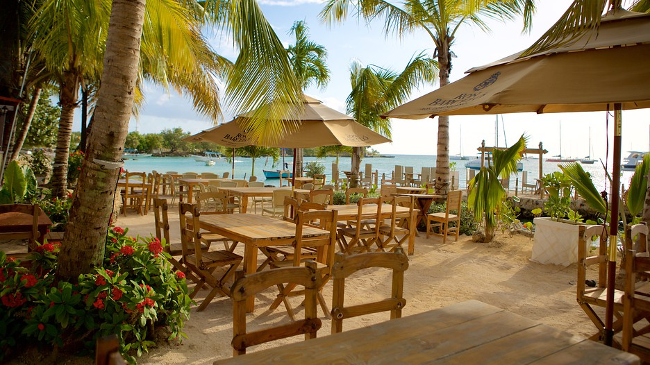 punta cana vacation package st louis to punta cana all inclu