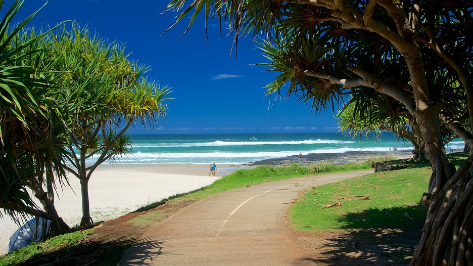 Holiday deals ballina