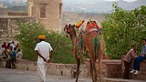 Mehrangarh Fort - Jodhpur - Tourism Media