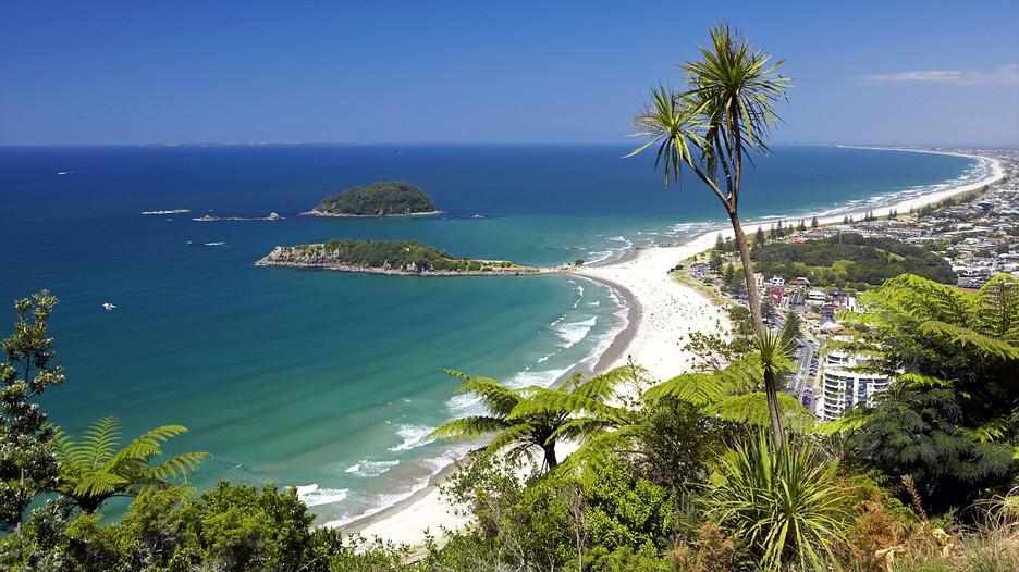 Hotels In Tauranga New Zealand