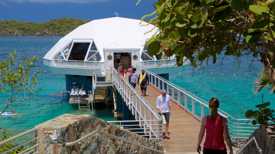 Coral World Ocean Park In St Thomas Expedia