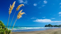 Bethells Beach - New Zealand