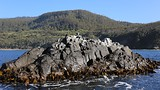 Bruny Island - Tourism Australia & Graham Freeman