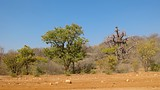 Opuwo - Namibia - Tourism Media