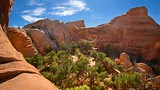 Double O Arch - Moab - Tourism Media
