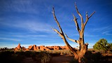 Arches National Park - Moab - Tourism Media