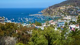 Catalina Island - California - Tourism Media