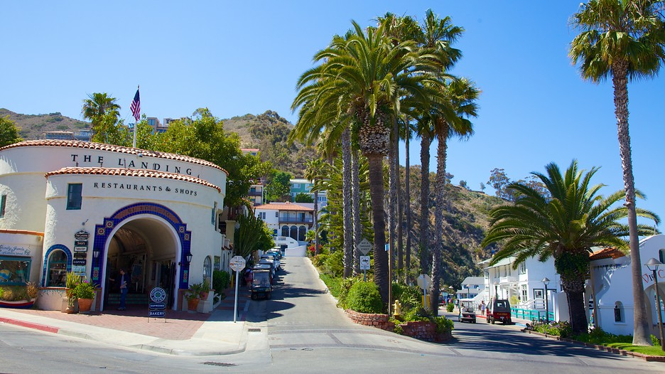 Watch out for the various events that Catalina Island has lined up for the year. Make the most of your stay by joining one or two of our events and festivities!