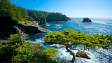 Cape Flattery - Washington - Tourism Media