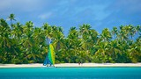 Tekopua - Cook Islands - Tourism Media
